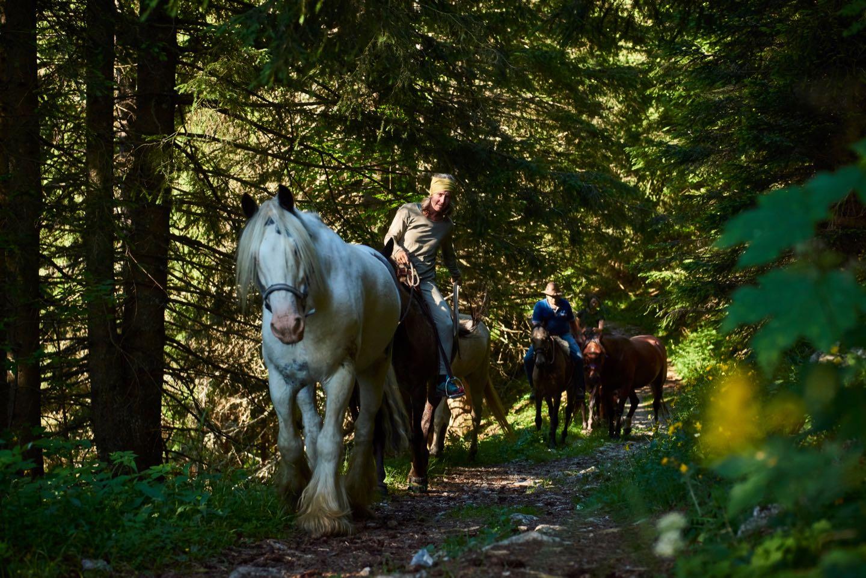 Pferdealp Pipilotta